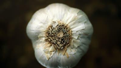 Knoblauch schmeckt und kann im Garten auch als Fungizid eingesetzt werden. (Bilder: Getty)