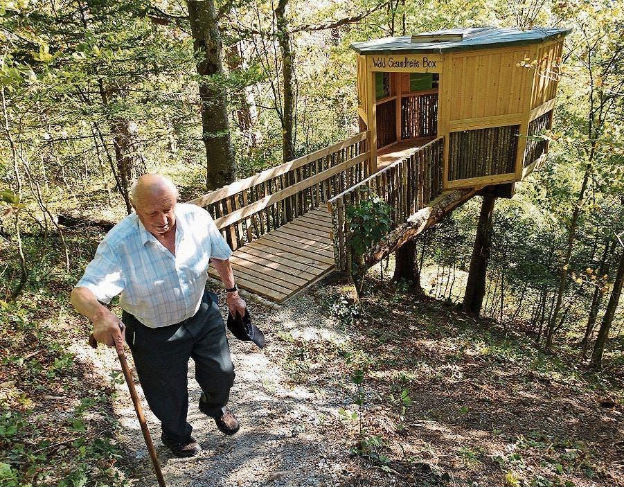 Die Wald-Gesundheitsbox steht wie auf Stelzen über dem Abhang. Hinein kommt man über eine schmucke Holzbrücke.