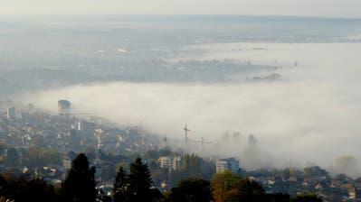 Wegen des Supersommers: In der Region Rorschach gibt es kaum Herbstnebel