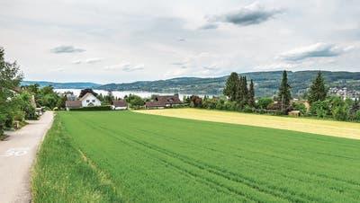 Wohnungen statt Häuschen in Steckborn