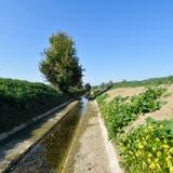 Der Giessen bei Bürglen führt auch Mitte Oktober nur sehr wenig Wasser. (Bild: Donato Caspari, 15. Oktober 2018)
