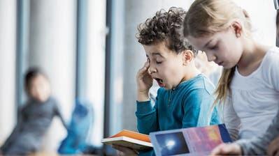 Wegen Zeitumstellung: Lehrer und Politiker fordern späteren Unterrichtsbeginn für Schüler