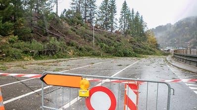 Orkan «Vaia» hinterlässt in der Schweiz seine Spuren