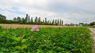 Rechtlich betrachtet ist das Grundstück an der Ecke Sonnenhof-/Schaffhauserstrasse noch im Eigentum der Stadt. (Bild: Donato Caspari