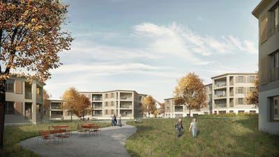 Visualisierung zeigt, wie die Überbauung der Wohnbaugenossenschaft Linde aussehen könnte. (Bild: PD)
