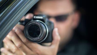 Hornkühe auf der Kippe - Klare Trends zu SBI und Sozialdetektiven