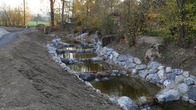 Die neuen Fischtreppen ermöglichen es den Fischen, den Bach zu besiedeln. (Bild: Sandro Büchler)