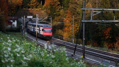 Der bestehende Zimmerberg-Tunnel ist ein Nadelöhr. (Bild: Stefan Kaiser (Baar, 6. November 2018))