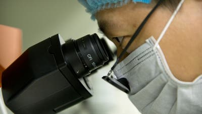 In this Oct. 9, 2018 photo, Qin Jinzhou looks through the lenses of a microscope as he works at a laboratory in Shenzhen in southern China's Guangdong province. Chinese scientist He Jiankui claims he helped make world's first genetically edited babies: twin girls whose DNA he said he altered. He revealed it Monday, Nov. 26, in Hong Kong to one of the organizers of an international conference on gene editing. Qin is an embryologist in He's lab. (AP Photo/Mark Schiefelbein)
