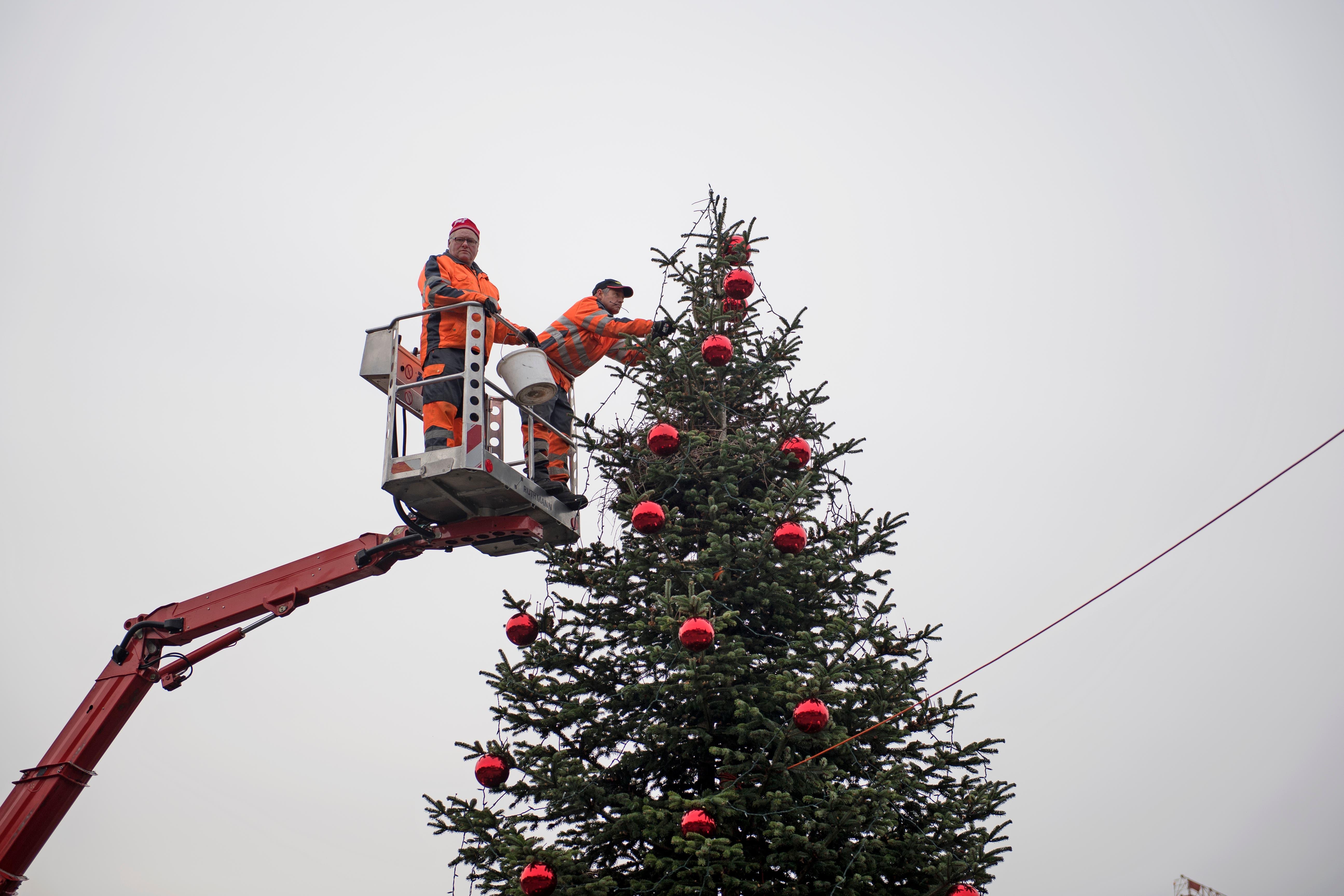 Werkdienst-Mitarbeiter Urs Wicky (links) und Hans Frei schmücken im Kreisel Merkur den Horwer Weihnachtsbaum. (Bild: Corinne Glanzmann, 29. November 2018)