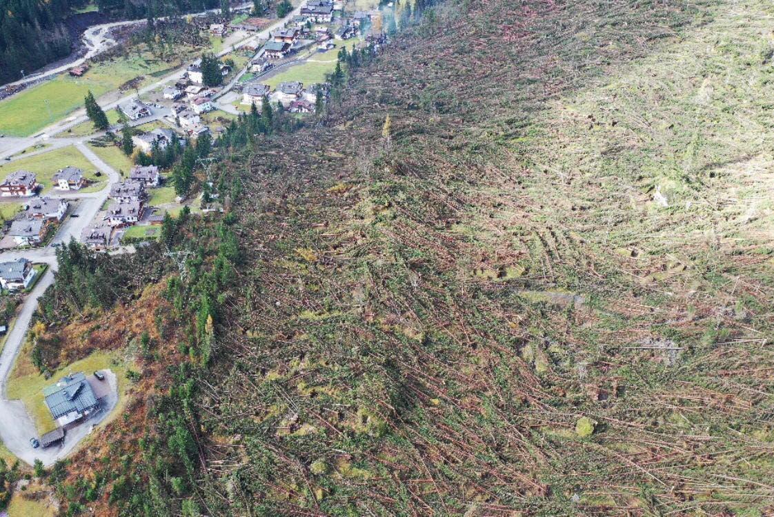 Der Sturm hat einen ganzen Wald bei Belluno umgemäht. (Bild: Diego Riva / EPA (Belluno, 3. November 2018))