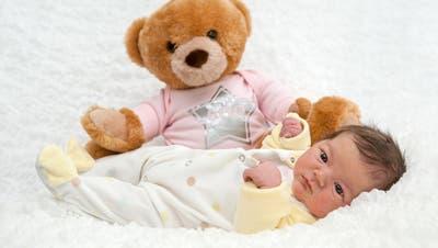 Erstmals 600 Geburten im Spital in Stans