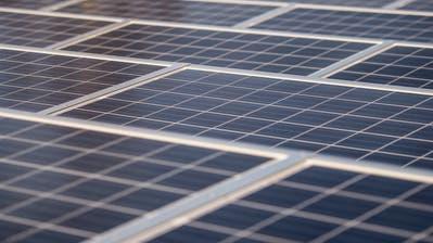 Grosse Beteiligung an geplanter Fotovoltaik-Anlage in Wil
