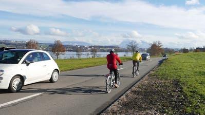 Für den Rundweg um den Baldeggersee liegt eine neue Variante auf dem Tisch. Diese sieht einen Velo- und Fussweg an der Kantonsstrasse vor. (Bild: PD)