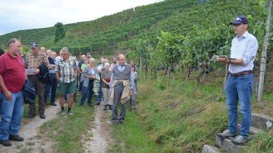 Rebbaukommissär Markus Leumann führte schon zahlreiche Rebbegehungen im Thurgau und in Schaffhausen durch. (Bild: Thomas Güntert)