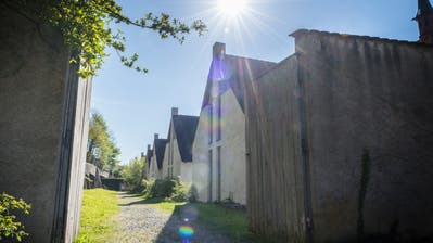 Der umstrittene Erweiterungsbau war zwischen der nördlichen Klostermauer und den Klausen von 1983 geplant. (Bild: Andrea Stalder)
