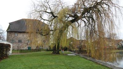 Hier wird die Bühne stehen: Auch das Gredhaus und die Weide dienen als Kulisse. (Bild: Jolanda Riedener)
