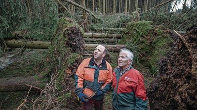 HOHENRAIN: Sturm Burglind zerstört Wald – Sie stehen erneut vor dem Wiederaufbau