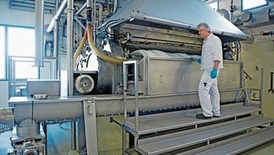 Milchverarbeiter Hochdorf verzeichnet dank Übernahme ein Rekordergebnis