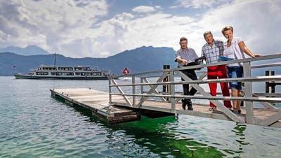 ENERGIE: Die Seewärme ist in Weggis ein heiss begehrtes Gut
