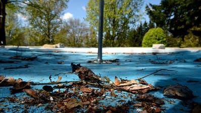 SPORTANLAGEN: Luzerner Stadtrat will Waldschwimmbad Zimmeregg sanieren
