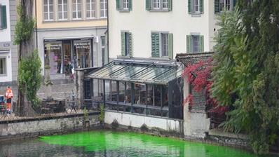 STADT LUZERN: Junge Grüne färben Brunnenwasser und Reuss ein