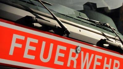 LUZERN: Brandstifter soll 3,3 Millionen Franken zahlen