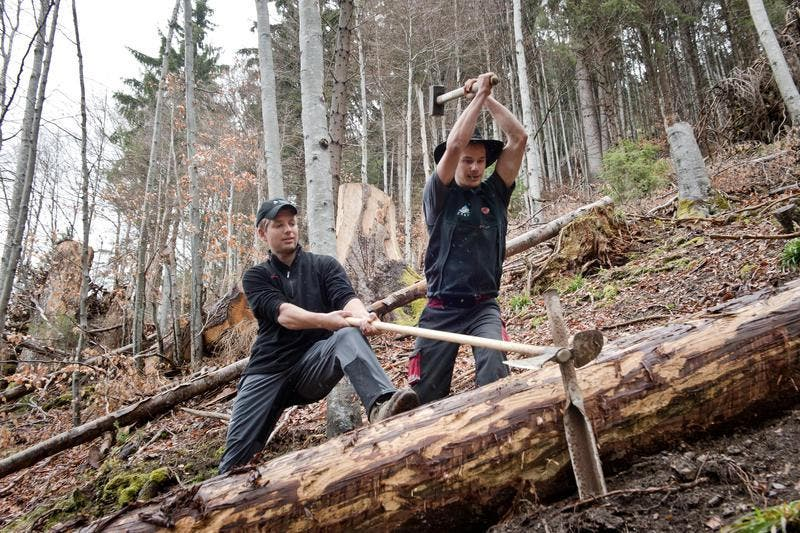 Martin Thalmann (links) und Patrick Schnider im Waldgebiet oberhalb von Flühli. (Bild: Dominik Wunderli / Neue LZ)