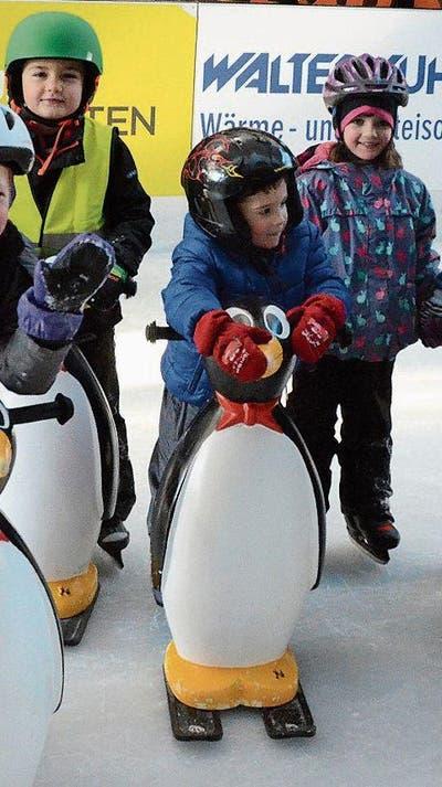 BUCHS/REGION: Ein idealer Platz für den ersten Spass auf dem Eis