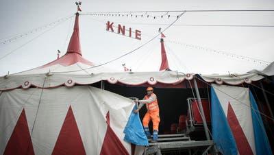 ST.GALLEN: Circus Knie warnt vor Ticketschwindlern