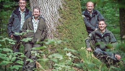 ERMATINGEN: Wachablösung im Wald