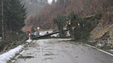 Sturm Burglind fegt über die Ostschweiz