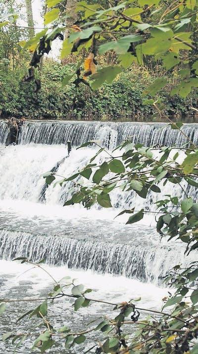 Wängi will Wasserkraft nutzen