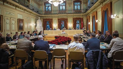 FRAUENFELD: Stadt soll global rechnen