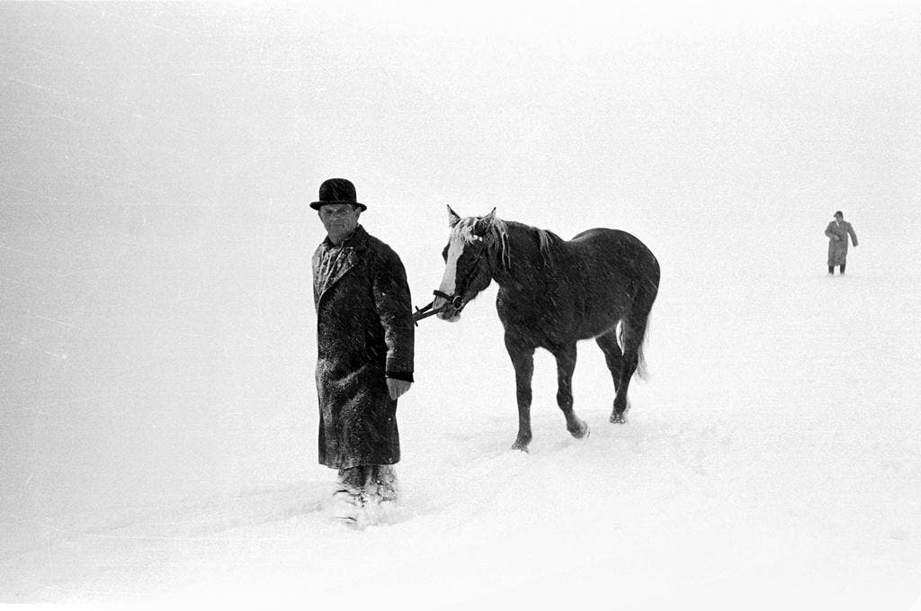 Seeüberquerung mit dem Pferd. (Bild: Keystone)