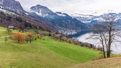 Siedlungsentwicklung: Kanton Luzern spricht in Vitznau ein Machtwort