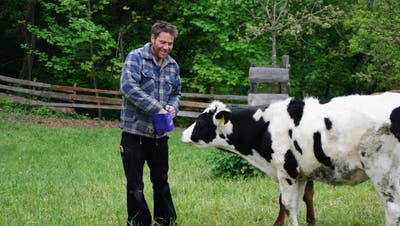 Fernsehshow-Teilnehmer Simon Gerber mit einem seiner Mastrinder. (Bild: Salome Preiswerk Guhl)
