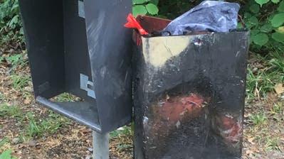 Die unbekannten Täter versuchten, den Mülleimer in Brand zu setzen. (Bild: PD)