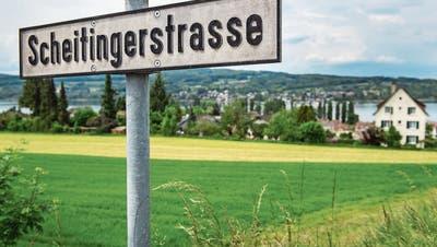 Die Scheitingerwiese: Beste Lage mit Blick auf den Untersee. (Bild:Reto Martin)