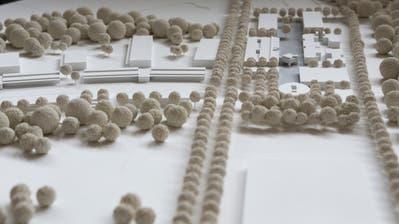 Modell des ausgebauten Waffenplatzes des Siegerprojektes aus demArchitekturwettberb von 2014. (Bild: Donato Caspari)