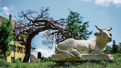 Aadorfer Skulpturenweg eröffnet am Sonntag mit über 50 Werken