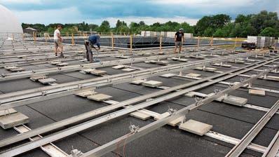 Romanshorn: Solaranlage wird wegen zu hoch gewachsener Pflanzen saniert