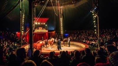 Wird die Zirkusmanege bald leer sein? (Bild: Andrea Stalder)