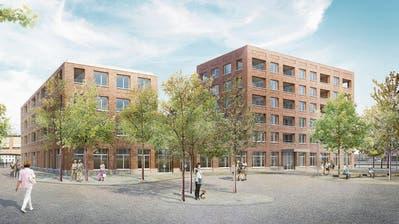 HRS will ein Wahrzeichen für die Stadt Arbon bauen