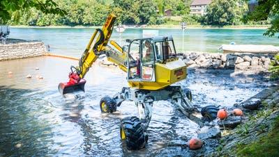 Die Stadt Diessenhofen baut ein Erholungsgebiet für Fische aus dem Rhein. Das kalte Wasser vom Geisslibach wird im Beckenrückgestaut und die Fische können sich abkühlen. (Bild: Andrea Stalder)