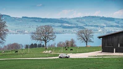 Bauplatz mit Aussicht: Im Gebiet «Fluck» sollen ein Wohnhaus und ein Ökonomiegebäude entstehen. (Bild: Boris Bürgisser, Sempach, 12. April 2018)