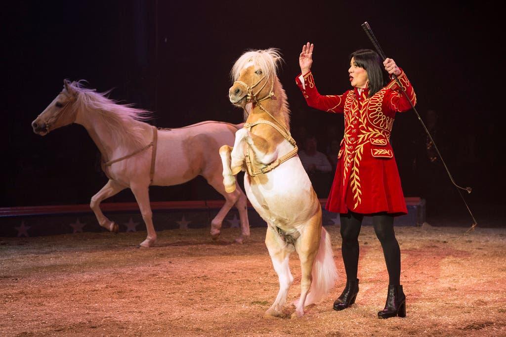 Mary José Knie führte ihre Pferde vor. (Bild: Melanie Duchene / Keystone (Rapperswil, 15. März 2018))