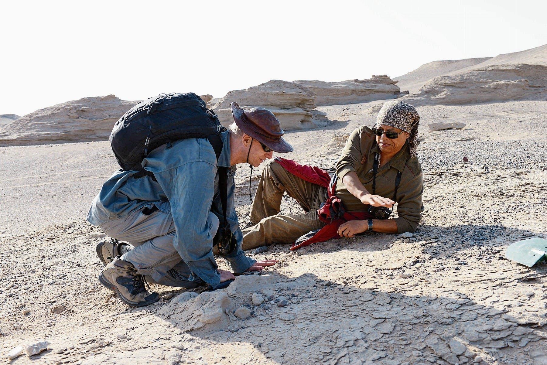 Die Stelle in der chinesischen Wüste, wo Alexander Kellner (links) die Flugsaurier-Eier ausgrub. (Bild: imago/Xinhua)