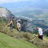Wildheuenist gefährlich und anstrengend: Unterwegs an den steilsten Berghängen