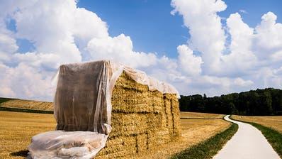 Bauern-Komitee hält Agrarinitiativen für zu extrem